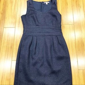 Banana Republic Navy Textured Dress